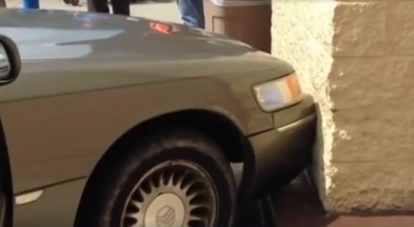 Приколы! В США собаки «угнали» машину и врезались в магазин!